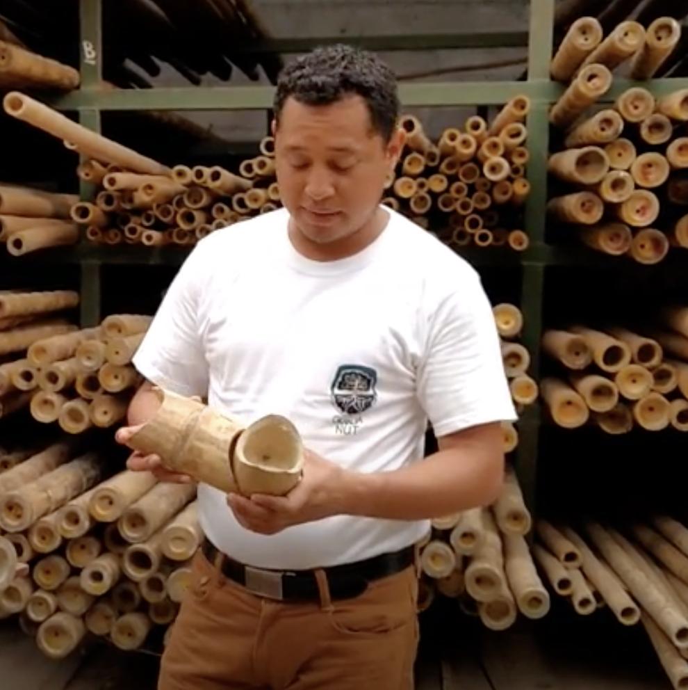 Te invitamos a conocer el al área de producción de bambú de la Red de Permacultura La Margarita, un proyecto que mira hacia el 2050.